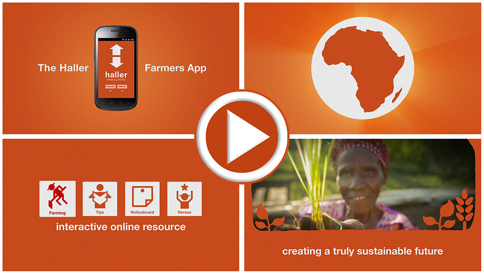 Photo: a new Haller charity's web app