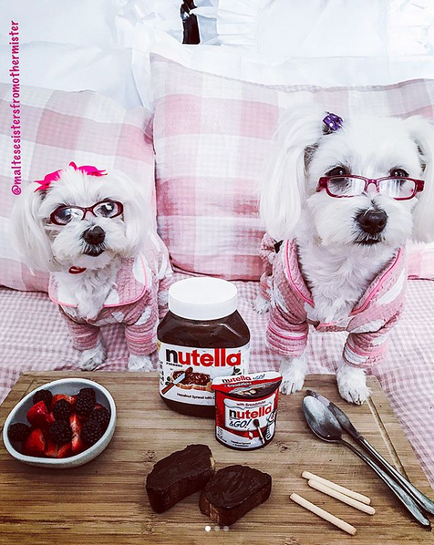 Popsop_Nutella_18