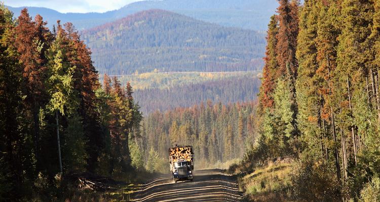 Approaching logging truck in beautiful British Columbia