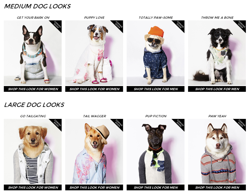 american_eagle_for_dogs_01