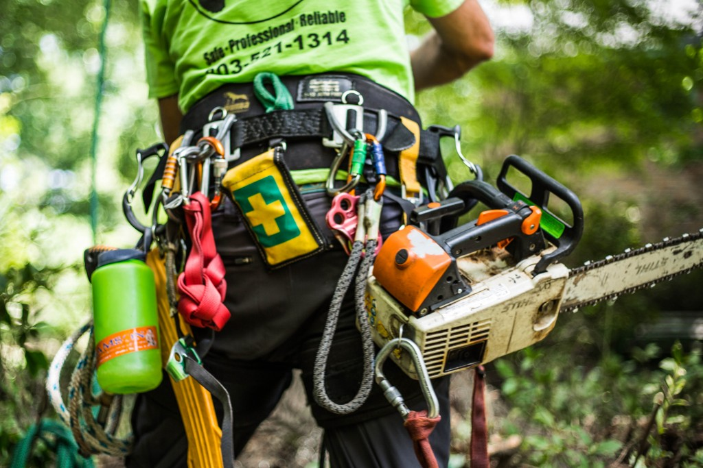arborist-equipment-tree-gear-alpine-tree-care