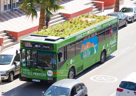 avtobus-zelenaja-krysha2