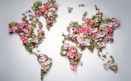 Photography cute happy fashion cool indie green flower wallpaper pink - Dior Adds Its Flower Gardens On A Digital Map Popsop