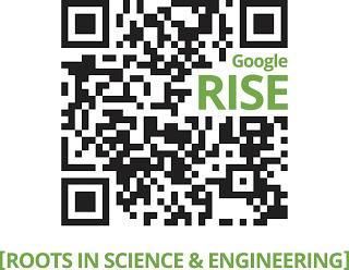 google_rise_2013_01
